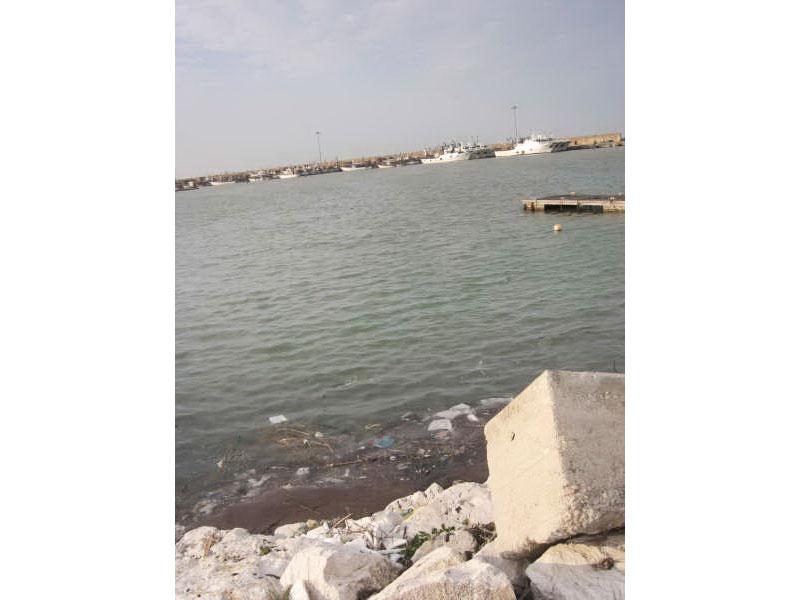 Le acque antistanti il porto di Giulianova